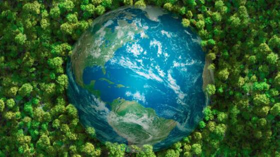 Hat das Klimagas CO<sub>2</sub> auch eine grüne Seite?